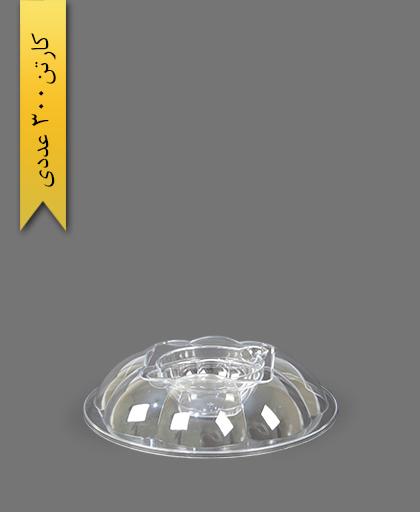درب مخصوص هلنسا 2000 شفاف - ظروف یکبار مصرف کوشا