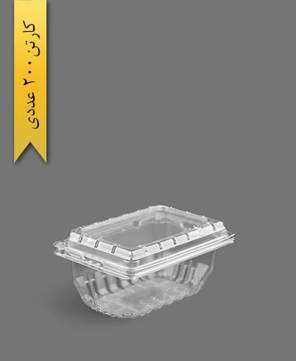 پانت 750 پانچدار - ظروف یکبار مصرف صنایع پلاستیک خوزستان