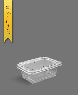 دلی مکعبی 1000 پانچدار - ظروف یکبار مصرف آذران ورق
