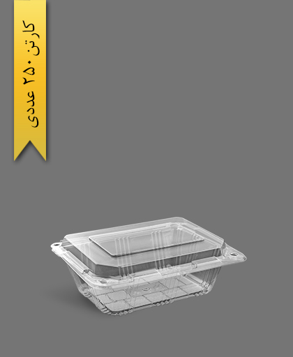 ظرف میوه بزرگ ساده - ظروف یکبار مصرف صنایع پلاستیک خوزستان