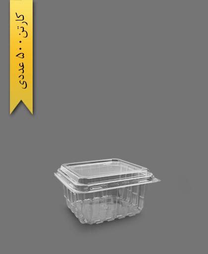 فروت باکس 450 - ظروف یکبار مصرف صنایع پلاستیک خوزستان