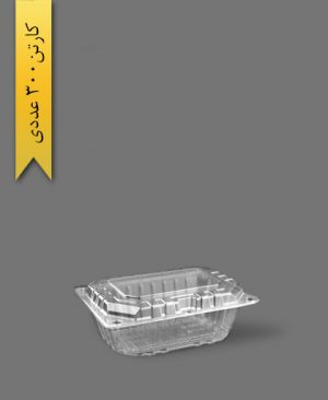 باکس پذیرایی - ظروف یکبار مصرف تاب فرم