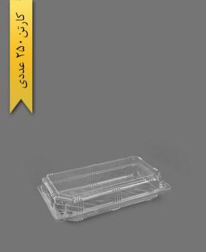 لانچ باکس بزرگ - ظروف یکبار مصرف به ظرف