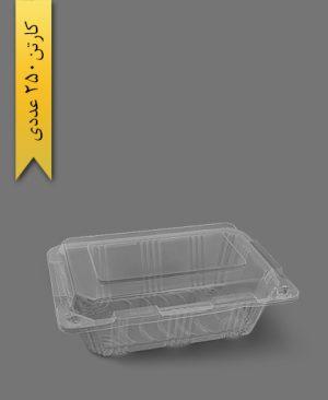 ظرف میوه آرمانی - ظروف یکبار مصرف پارس پلاستیک