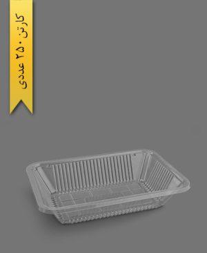 دیس گود شفاف - ظرف یکبار مصرف تاب فرم