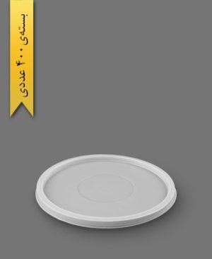درب ماستی بزرگ - ظروف یکبار مصرف پیشگامان