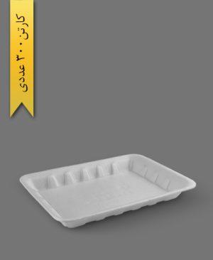 دیس فوم کوچک - ظروف یکبار مصرف ام جی